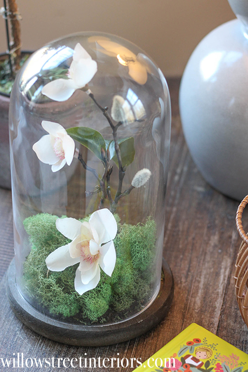 how to make this cloche arrangement